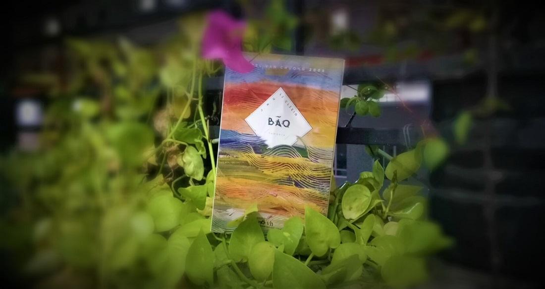 Review sách Người Đàn Bà Không Danh Tính – Le Clezio: nơi hạt giống nẩy mầm