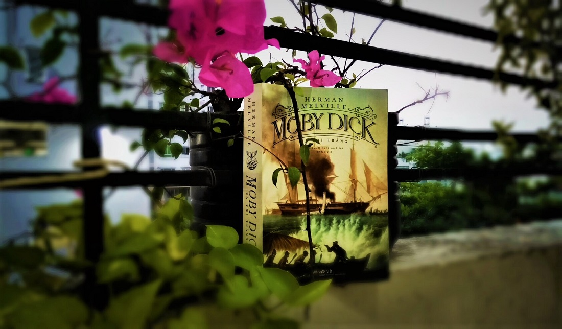 Review sách Moby Dick – Herman Melville: là núi cao hay vực thẳm?