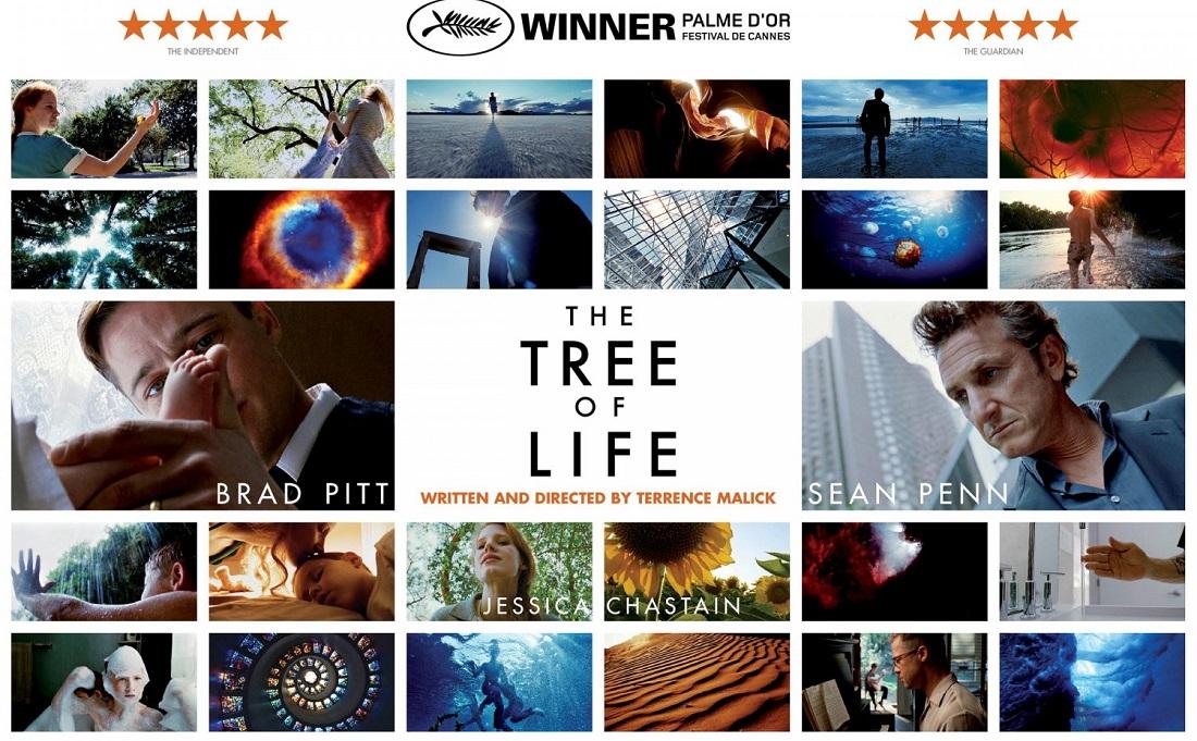Review phim The Tree of Life (2011): biết ơn và oán trách