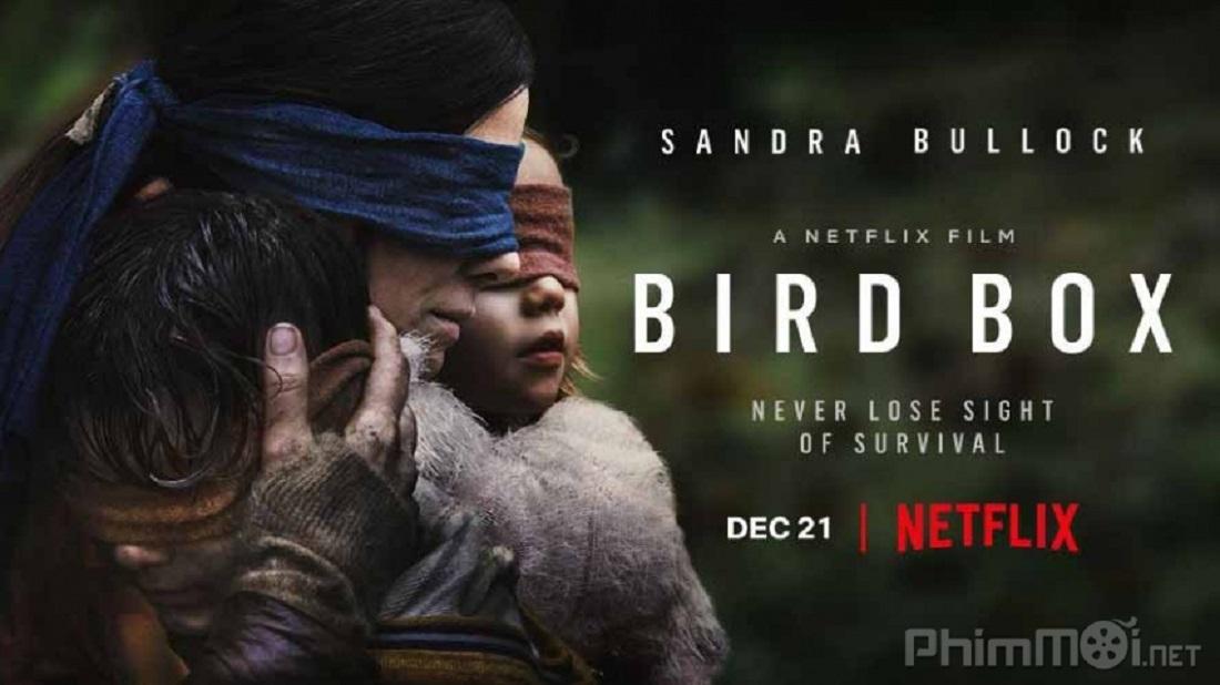 Riview ý nghĩa phim Bird Box:  con người thua cả chim